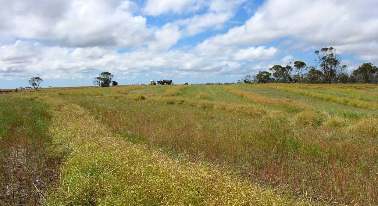 467 Kelly Road, North Stirlings, WA, 6338 - Image 3