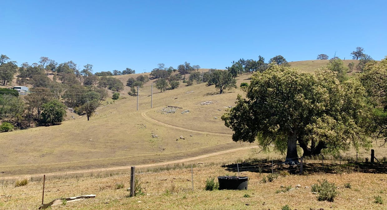 258 Grosses Creek Rd, Buckajo, NSW, 2550 - Image 8
