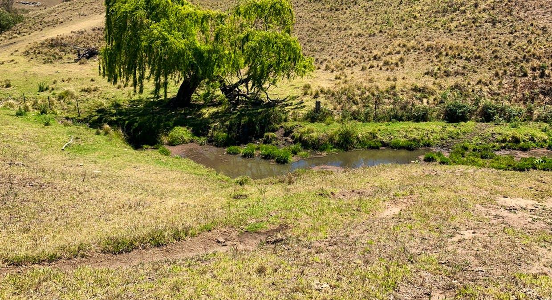 258 Grosses Creek Rd, Buckajo, NSW, 2550 - Image 2