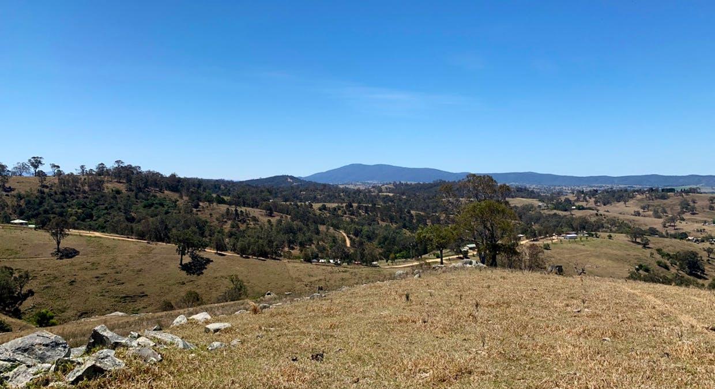 258 Grosses Creek Rd, Buckajo, NSW, 2550 - Image 16