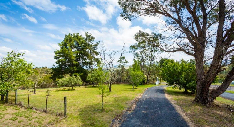 43 Nelba Nelba Rd, Bega, NSW, 2550 - Image 6