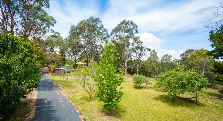 43 Nelba Nelba Rd, Bega, NSW, 2550 - Image 4