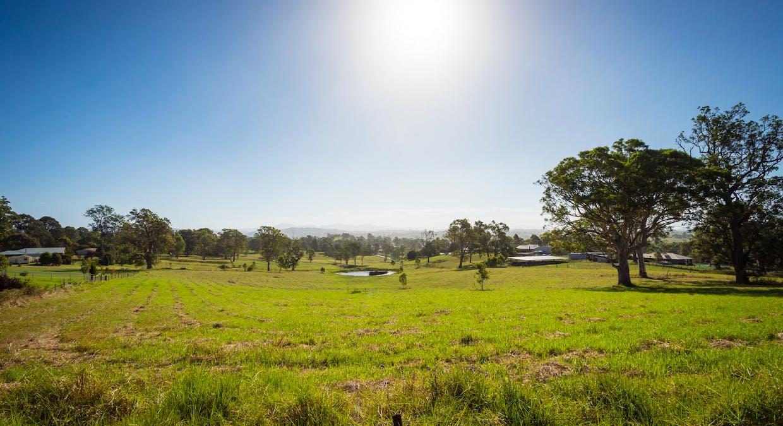 1368 Tarraganda Lane, Tarraganda, NSW, 2550 - Image 20