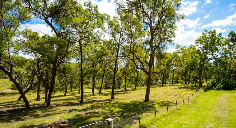 491 Wyndham Lane, Kanoona, NSW, 2550 - Image 22