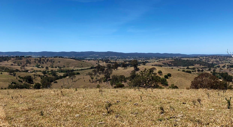 258 Grosses Creek Rd, Buckajo, NSW, 2550 - Image 3