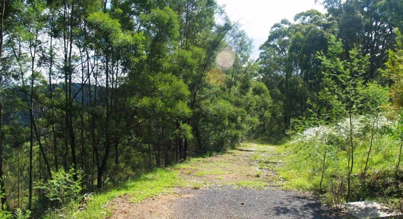 713 Upper Cobargo Rd, Brogo, NSW, 2550 - Image 12