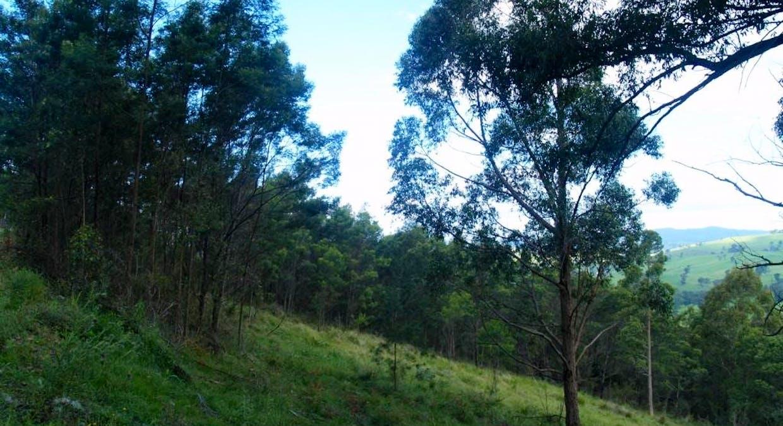 713 Upper Cobargo Rd, Brogo, NSW, 2550 - Image 9