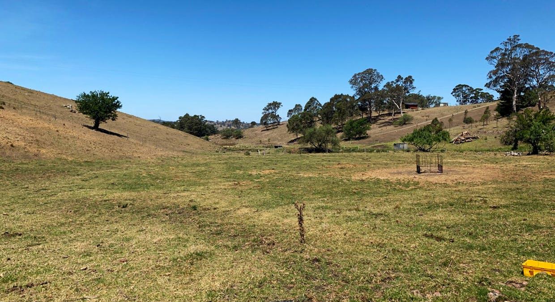 258 Grosses Creek Rd, Buckajo, NSW, 2550 - Image 1