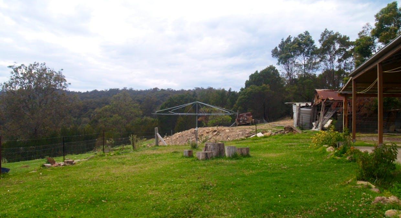 631 Reedy Swamp Rd, Bega, NSW, 2550 - Image 5