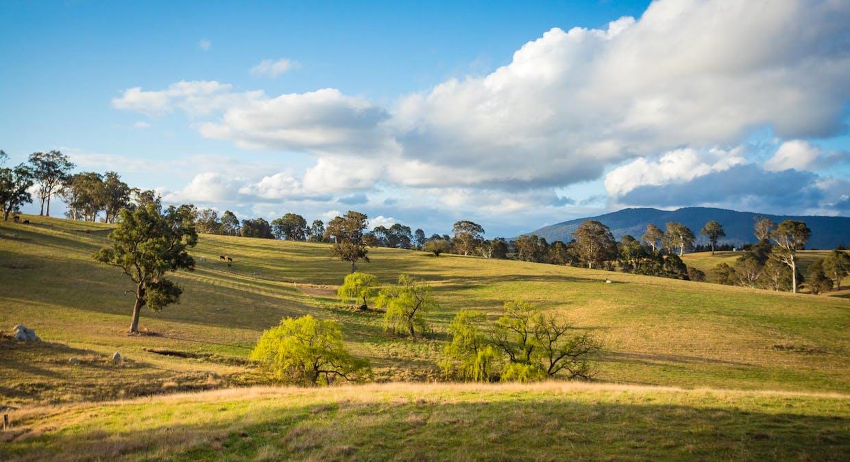 335 Angledale Rd, Angledale, NSW, 2550 - Image 39