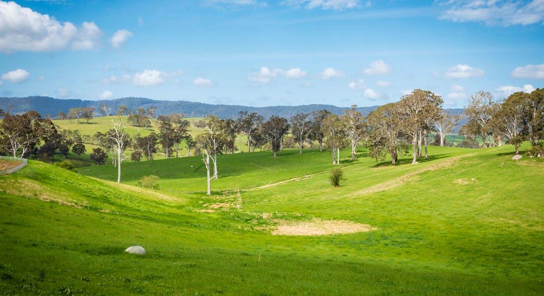 335 Angledale Rd, Angledale, NSW, 2550 - Image 2