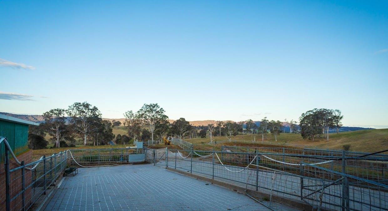 335 Angledale Rd, Angledale, NSW, 2550 - Image 20