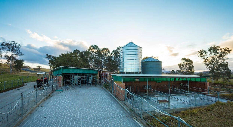335 Angledale Rd, Angledale, NSW, 2550 - Image 21
