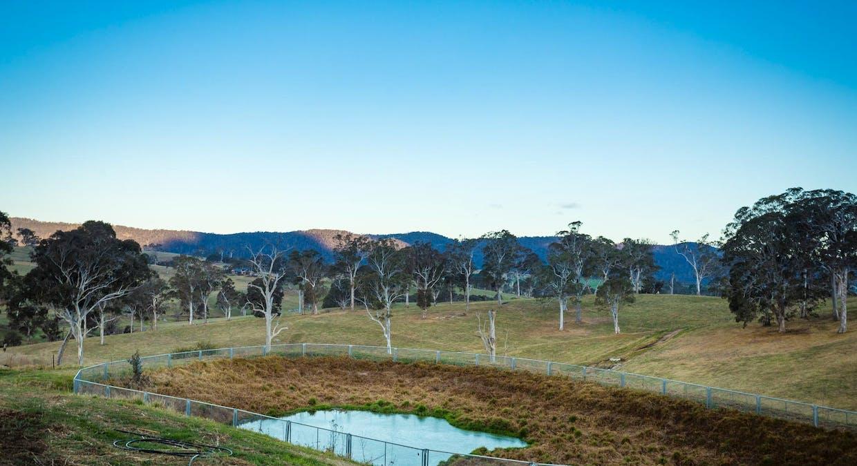 335 Angledale Rd, Angledale, NSW, 2550 - Image 19
