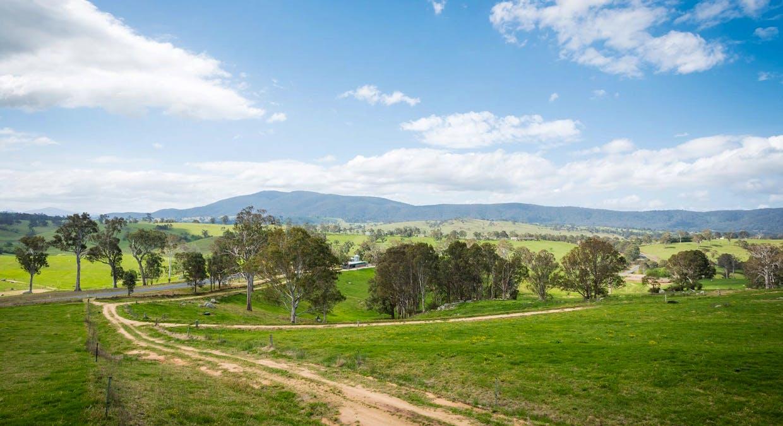 335 Angledale Rd, Angledale, NSW, 2550 - Image 27
