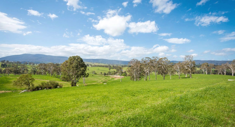 335 Angledale Rd, Angledale, NSW, 2550 - Image 33