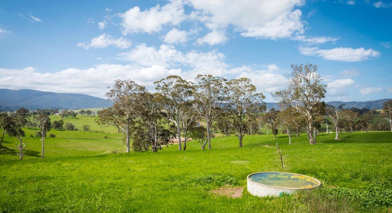 335 Angledale Rd, Angledale, NSW, 2550 - Image 34