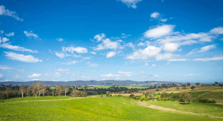 335 Angledale Rd, Angledale, NSW, 2550 - Image 29