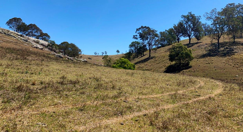 258 Grosses Creek Rd, Buckajo, NSW, 2550 - Image 12