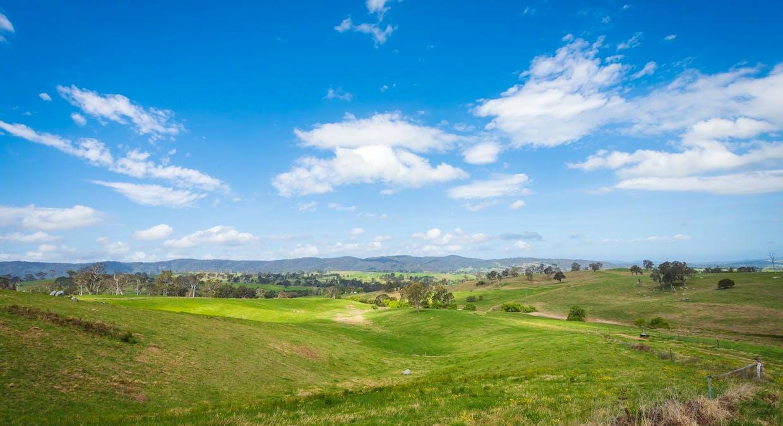 335 Angledale Rd, Angledale, NSW, 2550 - Image 35