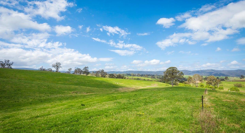 335 Angledale Rd, Angledale, NSW, 2550 - Image 36