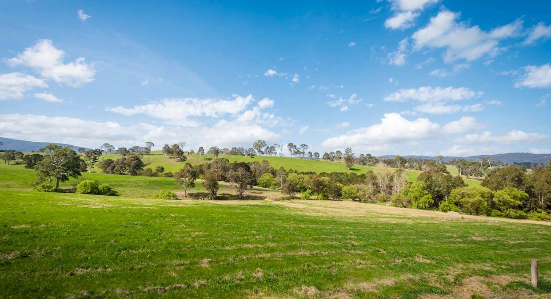 335 Angledale Rd, Angledale, NSW, 2550 - Image 38