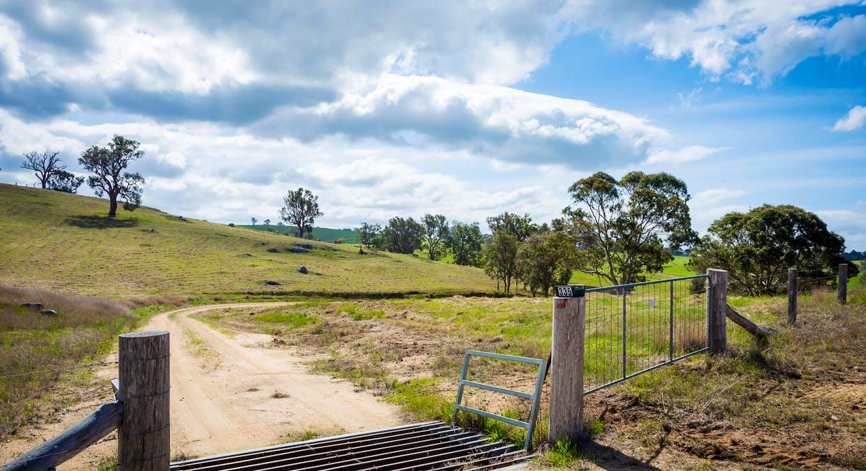 335 Angledale Rd, Angledale, NSW, 2550 - Image 3