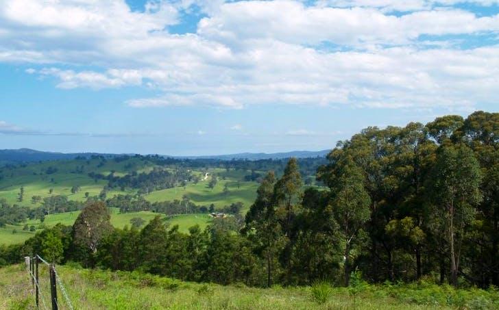 713 Upper Cobargo Rd, Brogo, NSW, 2550 - Image 1