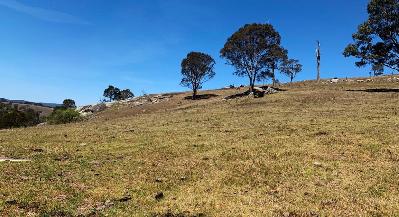 258 Grosses Creek Rd, Buckajo, NSW, 2550 - Image 18