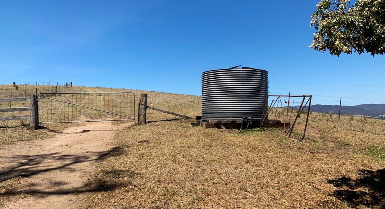 258 Grosses Creek Rd, Buckajo, NSW, 2550 - Image 4
