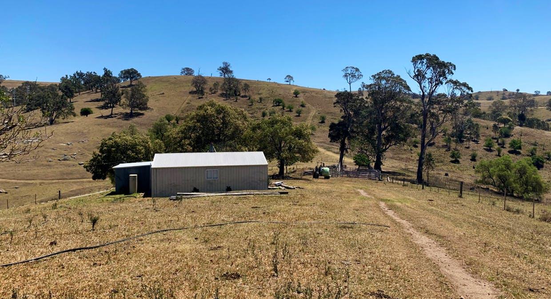 258 Grosses Creek Rd, Buckajo, NSW, 2550 - Image 5