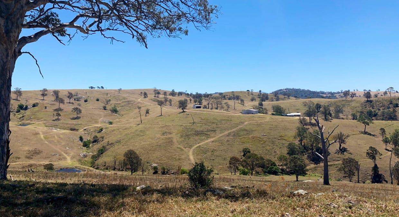 258 Grosses Creek Rd, Buckajo, NSW, 2550 - Image 15