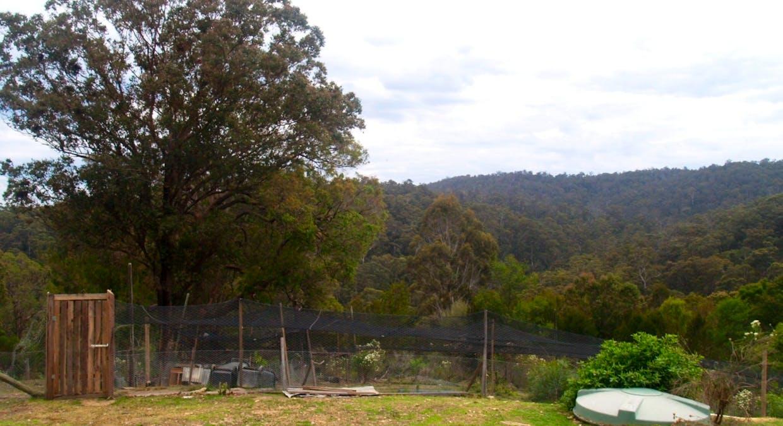 631 Reedy Swamp Rd, Bega, NSW, 2550 - Image 14
