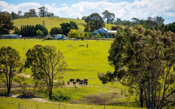 123 Dummett Jessops Rd, Quaama, NSW, 2550 - Image 1