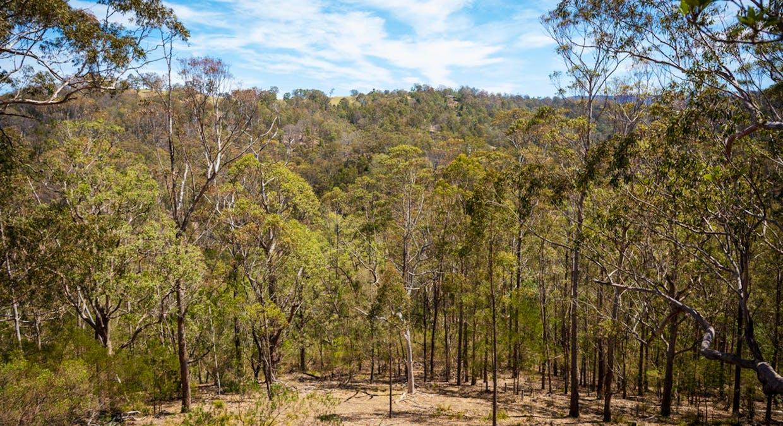 371 Blanchards Rd, Brogo, NSW, 2550 - Image 30
