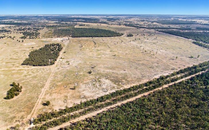 Chinchilla, QLD, 4413 - Image 1