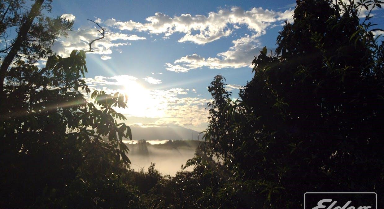 274 Hitchconole Road, Tarzali, QLD, 4885 - Image 4