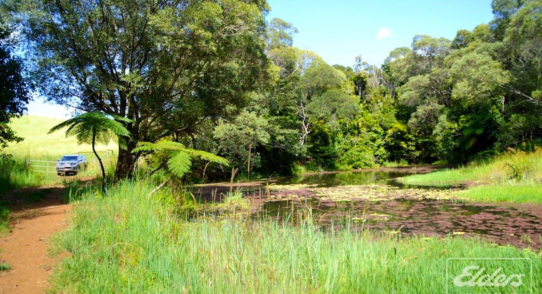 Tarzali, QLD, 4885 - Image 11