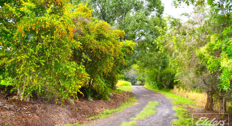 240L Lake Barrine Road, Malanda, QLD, 4885 - Image 3