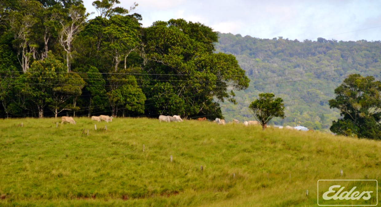 Lot 25 Mckell Road, Malanda, QLD, 4885 - Image 12