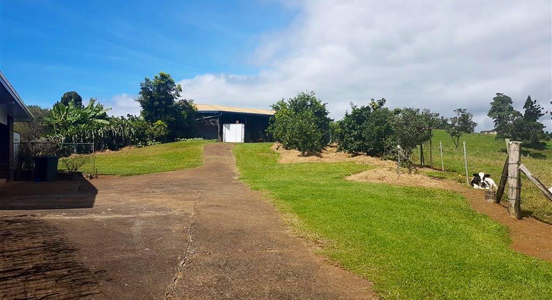 888 Old Palmerston Highway, Millaa Millaa, QLD, 4886 - Image 25