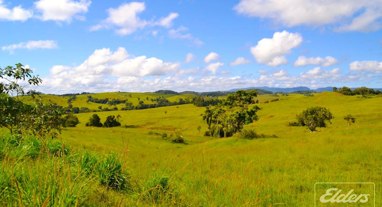 Tarzali, QLD, 4885 - Image 2