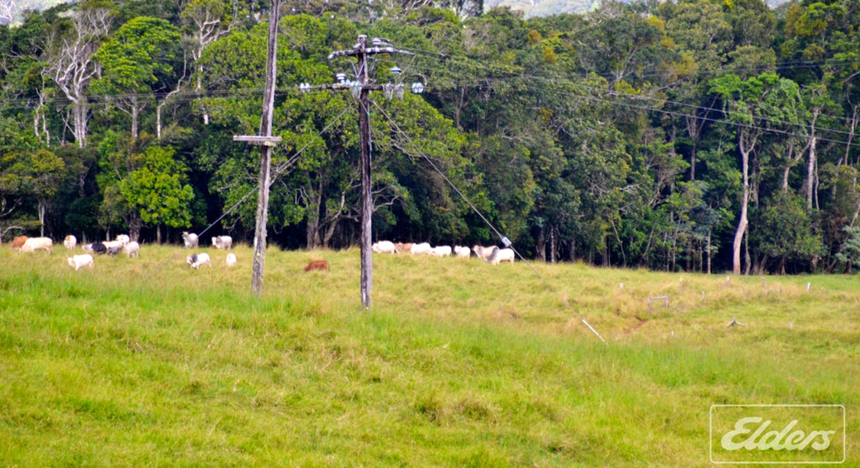 Lot 25 Mckell Road, Malanda, QLD, 4885 - Image 3