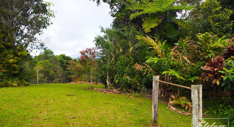 218 Old Boonjie Rd, Malanda, QLD, 4885 - Image 17