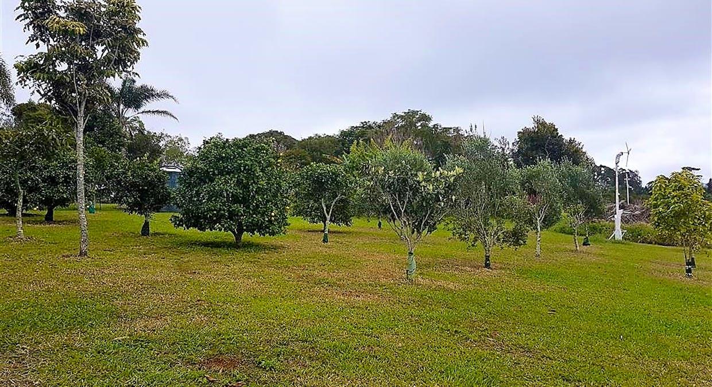 803 Tully Falls Road, Ravenshoe, QLD, 4888 - Image 9