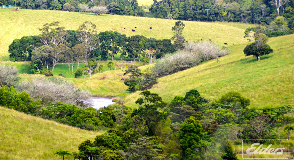 Lot 25 Mckell Road, Malanda, QLD, 4885 - Image 4