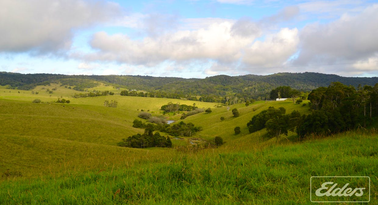 Lot 25 Mckell Road, Malanda, QLD, 4885 - Image 5