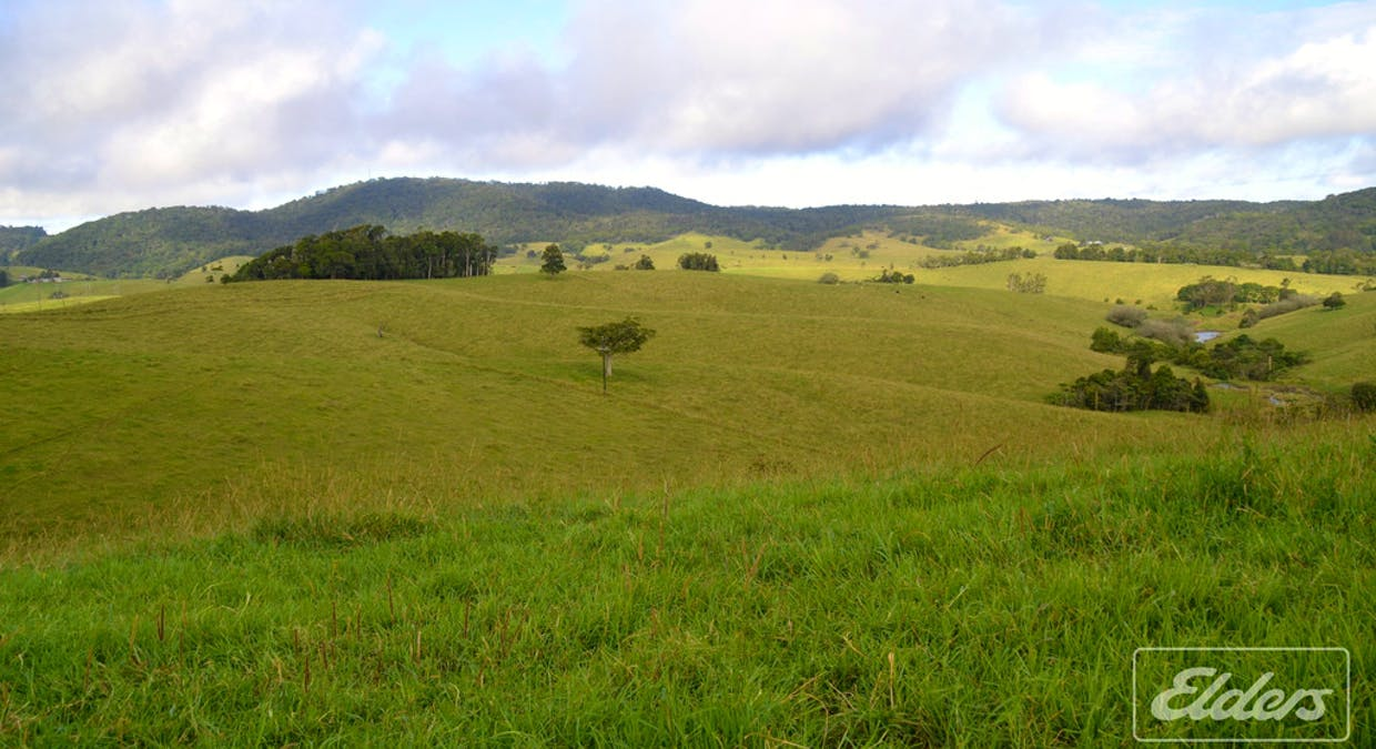 Lot 25 Mckell Road, Malanda, QLD, 4885 - Image 7