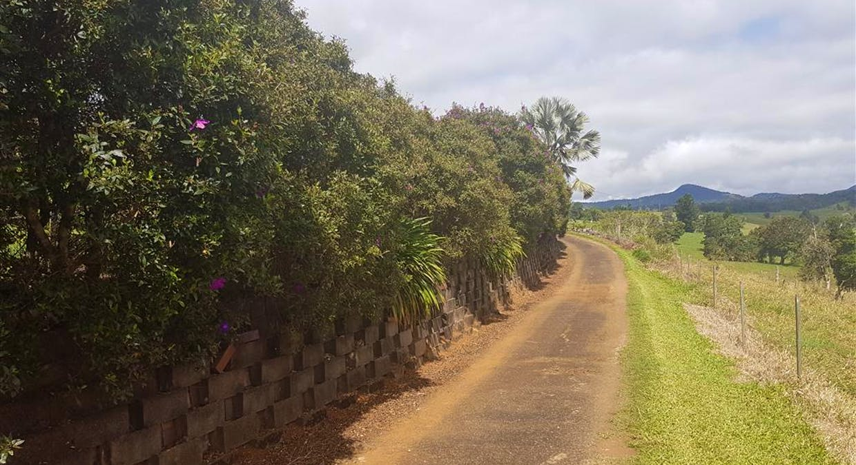 888 Old Palmerston Highway, Millaa Millaa, QLD, 4886 - Image 10