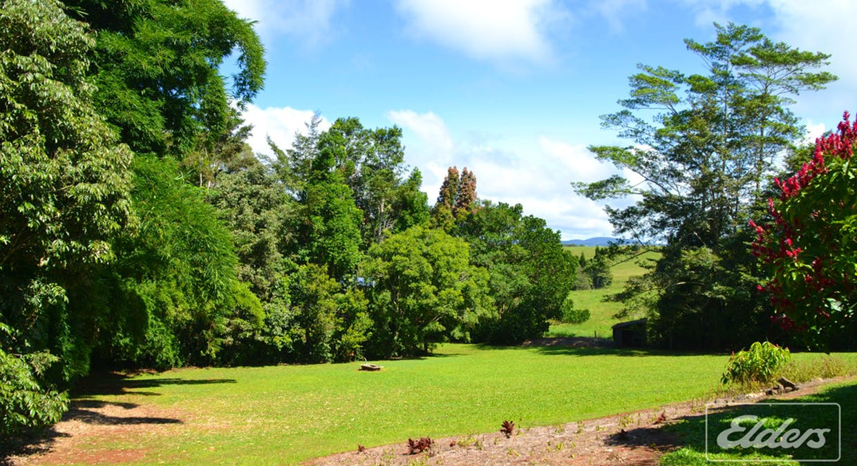 153 Merragallan Road, Malanda, QLD, 4885 - Image 12